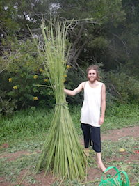 Australian-Grown-Hemp4