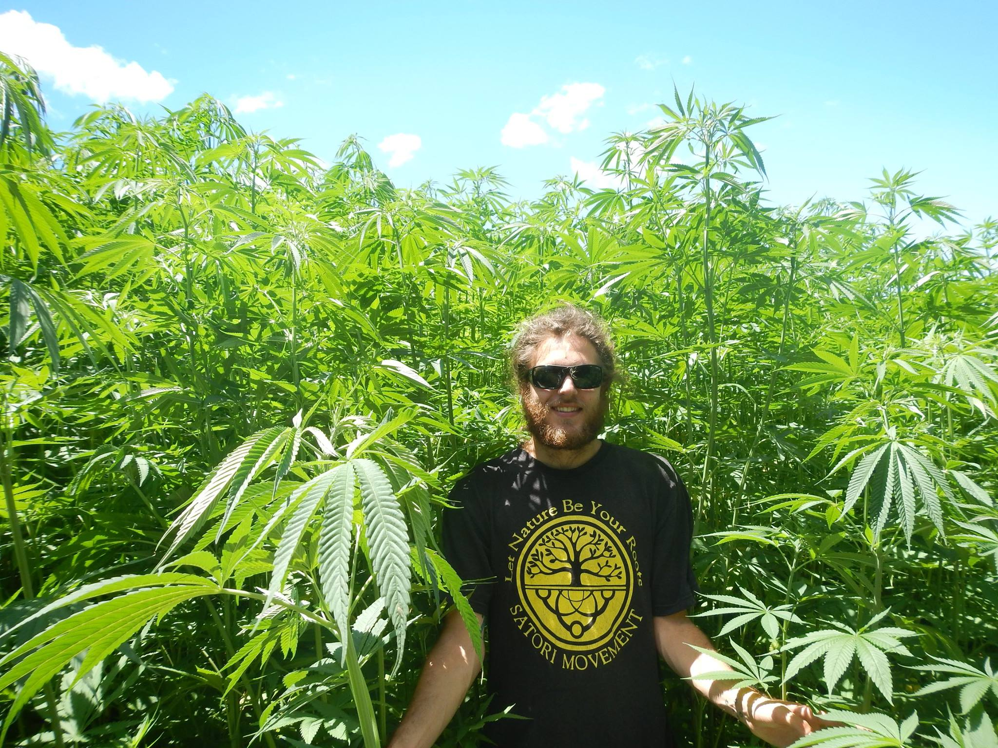 hemp-farm-bellingen-2013