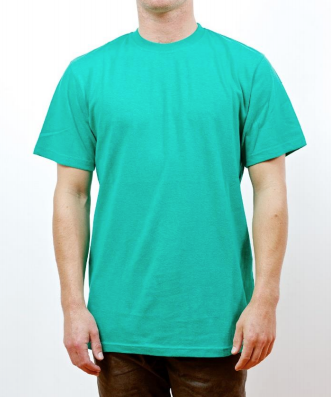 Hemp australia men 39 s t shirt green hemp store for Mens hemp t shirts